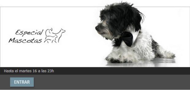 outlet de ropa para mascotas
